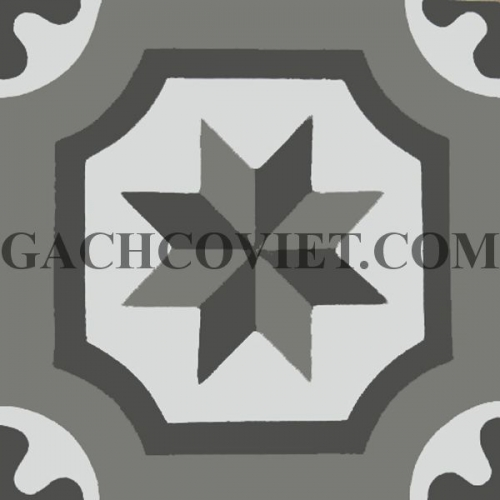 Gạch bông 20x20cm, V20-206